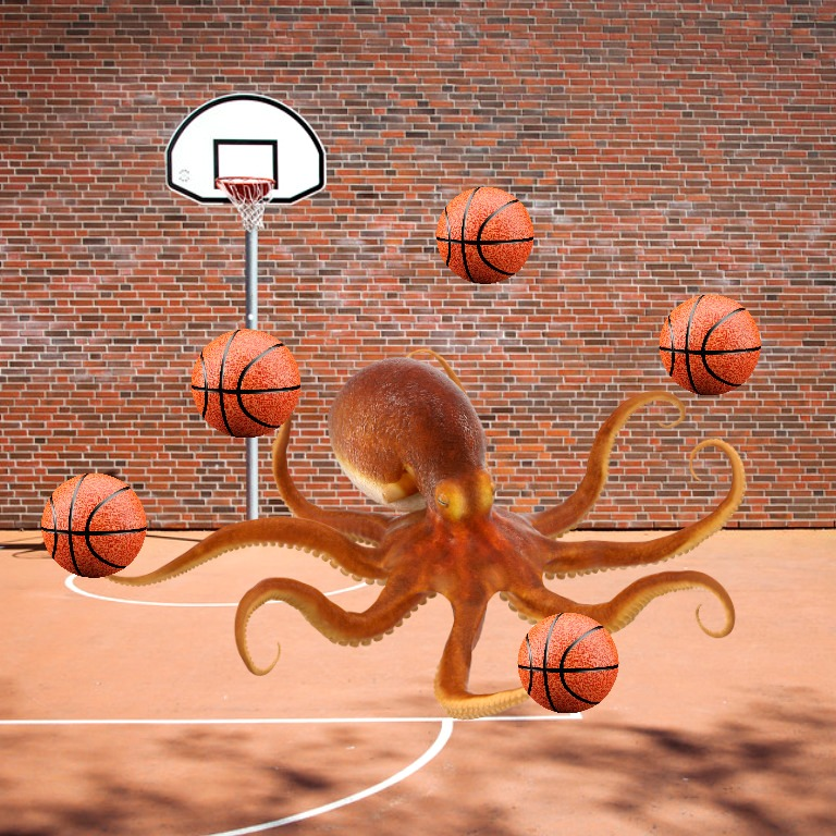 harr-the-octopus-1-1