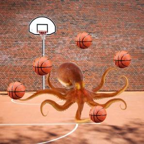 harr-the-octopus-1-1
